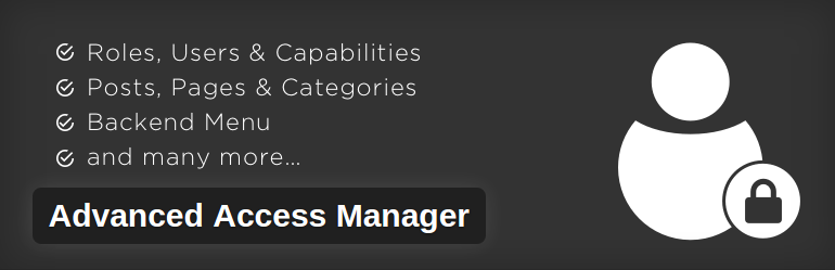 Advance access manager