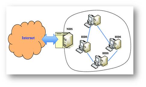 تشخیص نفوذ مبتنی بر شبکه
