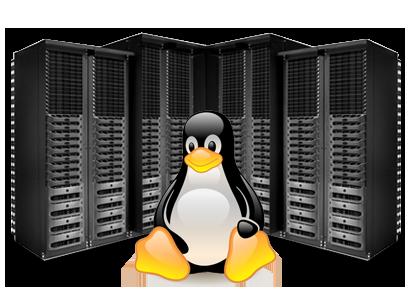 ویژگی های سرور لینوکسی