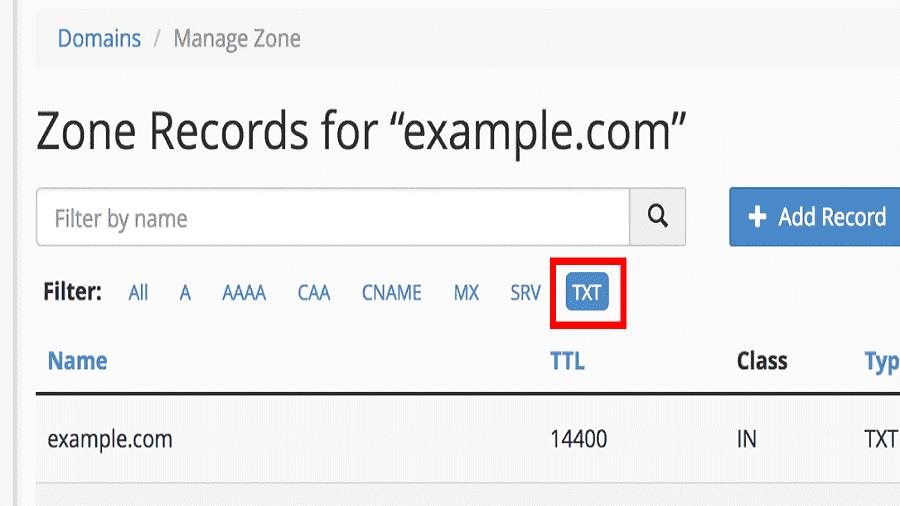 DNS TXT record