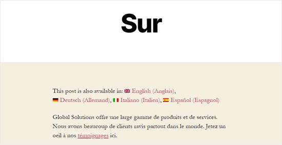صفحه درباره ما ترجمه شده به فرانسوی
