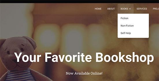 صفحه اصلی وب سایت و دیدن منو و زیر منو ها
