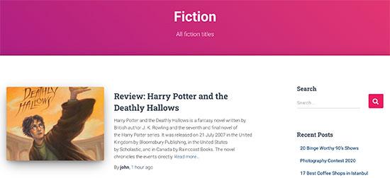 طبقه بندی سفارشی در وردپرس با نام fiction