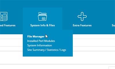 انتخاب بخش مدیریت فایل ها در دایرکت ادمین برای نصب پرستاشاپ