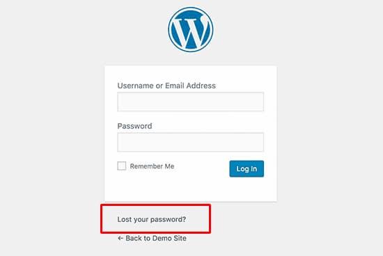 في هذه الصفحة ، يمكنك إعادة تعيين كلمة المرور الخاصة بك باستخدام رابط نسيت كلمة المرور الخاصة بي.