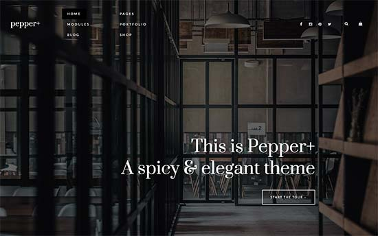 8. Pepper+