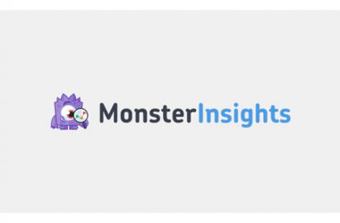 پلاگین MonsterInsights