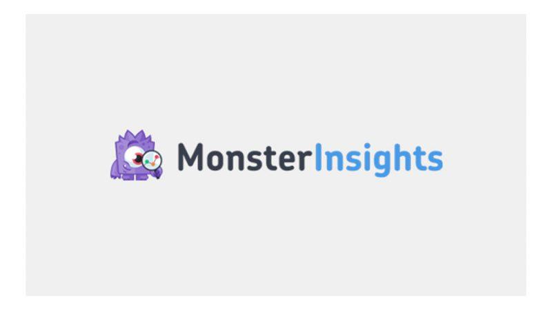 پلاگین MonsterInsights
